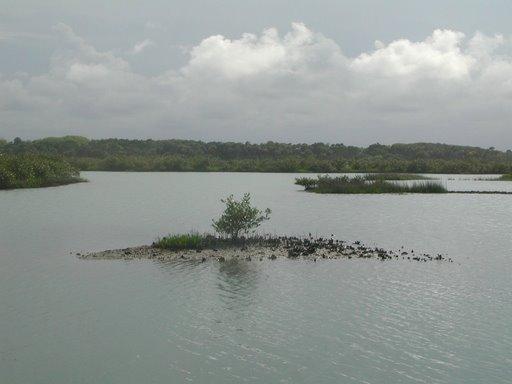 The Intracoastal waterway -  A1A Coast Road, FL