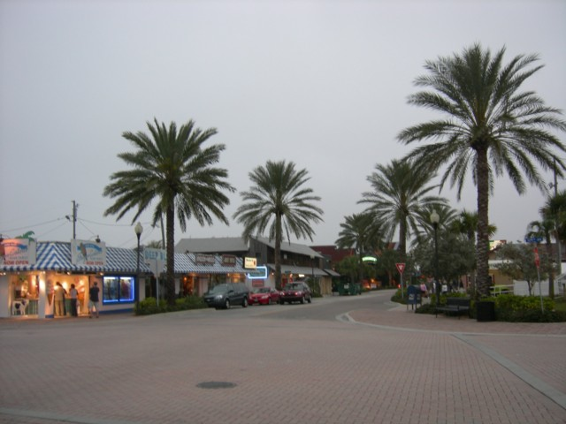 Palm trees abound