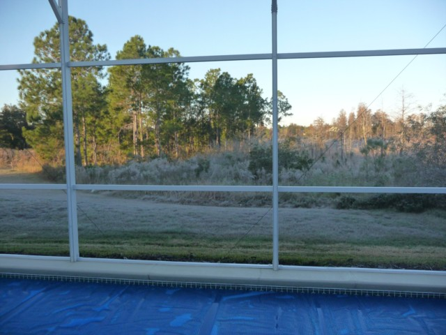 Frost in Orlando!