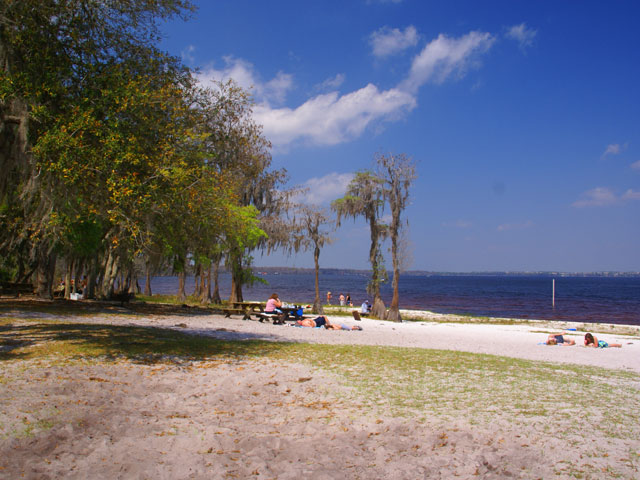 Beach and picnic area